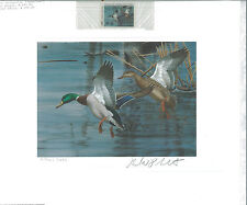 NORTH CAROLINA  #1 1983 STATE DUCK STAMP PRINT  MALLARDS by Richard Plasschaert