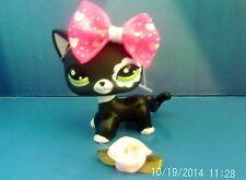 LPS Littlest Pet Shop Short Hair Cat #2249 avec accessoires 2 Arcs