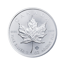 Silber Maple Leaf Tube 25x 2020 1 OZ Unze Ounce Once Silver Argent Kanada Canada