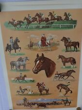 Horses poster 1959