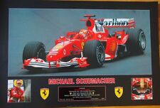 MICHAEL SCHUMACHER -  WORLD CHAMPION LIMITED EDITION NUMBERED POSTER