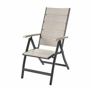 Poundex Fabrizia Aluminum Frame/Pe Resin Wood Outdoor 2 Chairs