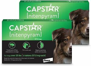 Capstar Green Over 25lbs Six Tabs for Dogs Kill Fleas Almost Instant 2-Pack