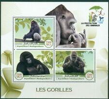 2017 Gorillas Animal Protection Apes Mammals