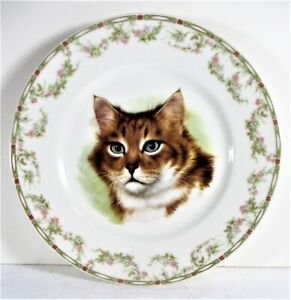 """THEODORE HAVILAND LIMOGES, MINT CONDITION 9 3/4"""" TABBY CAT PORTRAIT PLATE"""