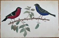 Hand-Painted/Original Art 1910 Postcard: Two Birds on a Branch - Artist-Signed