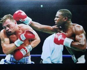 2 Different 8x10 photos Floyd Mayweather vs Arturo Gatti