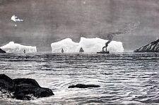 St. Johns Newfoundland 1884 ICEBERG ENTRANCE to HARBOR Antique Engraving Print