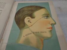 1926 Edition of the Library of Health by Frank Scholl, Large Book