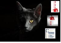 Enzymreiniger Geruchsentferner Katzenurin Tierurin Urinsteinentferner BIo ab 1 L