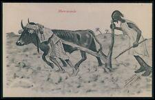 Caricature humor comic Ethnic arab North Africa Morocco old c1910 postcard bb