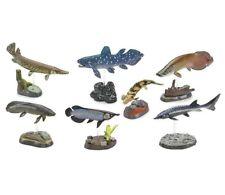 Colorata Fossil Fish Figurines Complete Set - Arowana, Sturgeon, Coelacanth