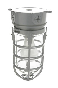 Woods Vandal Resistant Security Light With Ceiling Mount 150W Incandescent Bulb,