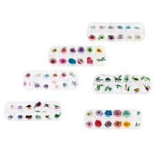 72Colors ASSORTED DRIED FLOWERS NAIL ART MANICURE for Acrylic UV Gel Tips