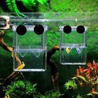 Fischzucht Box Shrimp Hatchery Aquarium Inkubator Aquarium G8L3
