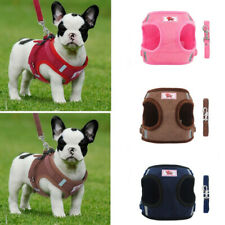 Puppy Harness and Lead Sets Small Dog Cat Pet Chest Strap for Outdoor Walking