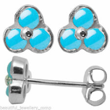 Beauty Not Enhanced Turquoise Fine Earrings