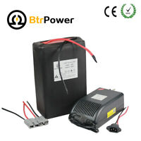 48v20Ah Lithium LIFePO4 Battery Pack for E-Bike 1000W Motor Scooter + 5A Charger