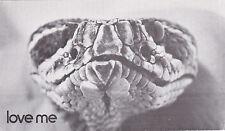Snake posing Postcard Unused VGC