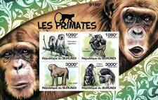 PRIMATES (Vervet Monkey/Chimpanzee/Baboon) Stamp Sheet #1 of 5 (2011 Burundi)