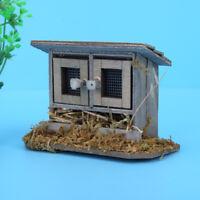 Kids Children Boy Girl Chicken House Garden Miniature Doll House Chicken Coop
