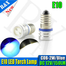 E10 Style Screw LED Bulb Car DIY Light Lamp Cold White/Blue Torch Lighting DC12V