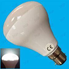 Ampoules sans marque en forme réflecteur pour le bureau