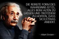 Albert Einstein Spruch 11 Blechschild Schild gewölbt Tin Sign 20 x 30 cm R0316