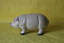 Spardose Sparbüchse Sparschwein Schwein  sehr schwer sehr sicher NEU