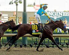 AMERICAN PHAROAH, 2015 Kentucky Derby Winner, 8x10 Color Photo