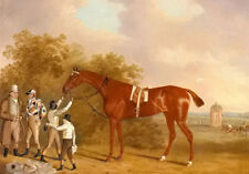 Oil painting Clifton Tomson - mr watts altisidora winner of the 1813 st leger