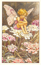 Flower Fairy Postcard: Curly Haired Fairy Sits on White & Pink Candytuft Flowers