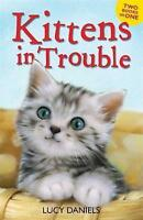Kittens in Trouble (Kittens in the Kitchen & Kitten in the Cold) (Animal Ark), D