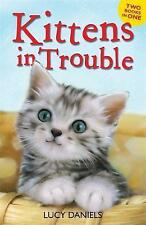 Kittens in Trouble (Kittens in the Kitchen & Kitten in the Cold) Animal Ark Book
