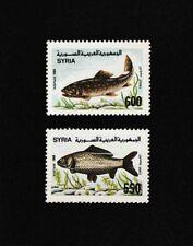 Syrien, Syria, 1989, Fische , Fish, MNH