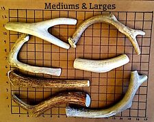 2 Pounds Premium Elk & Deer Antler Dog Chew Mix-Medium/Large-Extra Lbs Ship Free