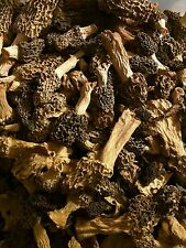 1 OZ Dried Morel Mushrooms Freshly Wild Harvested from Wisconsin 2019!!