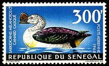 Senegal #C56 MNH CV$12.50 Knob-Billed Goose