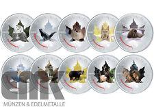 "Kanada - Maple Leaf ""Wildlife-Serie II."" Satz in Farbe - 10 x 5 Dollar 2015"