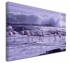 More details for pink flamingo on sea shore x-large 30