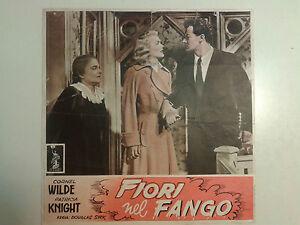 FOTOBUSTA CINEMATOGRAFICA FIORI NEL FANGO CORNEL WILDE PATRICIA KNIGHT 1949