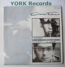 "CLIMIE FISHER - Love Changes - Ex Con 7"" POSTER SLEEVE"