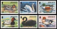 Jersey 2004 - Mi-Nr. 1122-1127 ** - MNH - Vögel / Birds