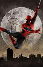 Spiderman from Marvel Comics Original 11x17 Art Print signed by Scott Harben