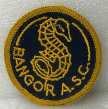 More details for vintage bangor amateur swimming club cloth badge patch ulster northern ireland