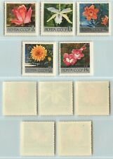 Russia USSR 1969 SC 3596-3600 MNH flowers . rt4180