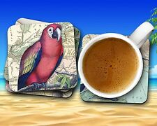 Tropical Birds on Vintage Maps 4 pc Coaster Set High Gloss Finish & Cork Backing
