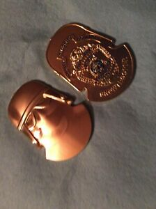 Star Wars Hoth Snowtrooper Alaska State Trooper Challenge Coin Gold Limted of 30