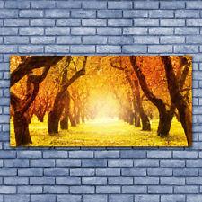 Tableau Impression Image sur Plexiglas® 140x70 Nature Forêt Sentier