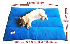 "Millies XXXL Orthopaedic Dog Bed/Mattress 120cm * 86cm ! high ""bounce"" filling 2"